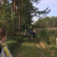 Nošení dříví do lesa